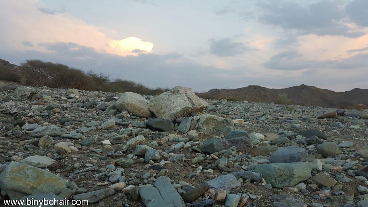 """بالصور ..وادي قنونى""""ياصورة راسمها الوفاء 2jc00575.jpg"""