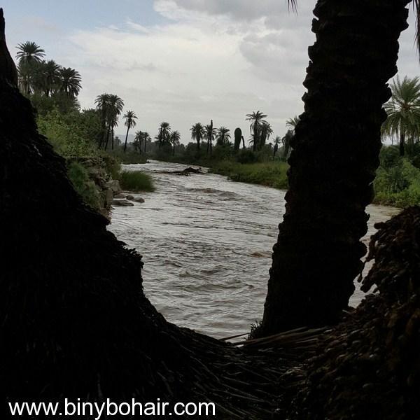 أمطار وسيول وادي قنونى1437/6/23 3ce06971.jpg