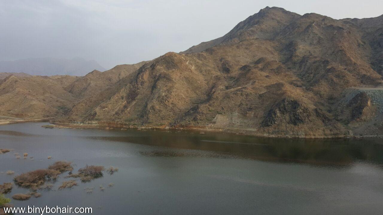 """بالصور ..وادي قنونى""""ياصورة راسمها الوفاء 7br00117.jpg"""