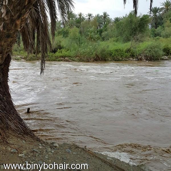 أمطار وسيول وادي قنونى1437/6/23 ahn06971.jpg
