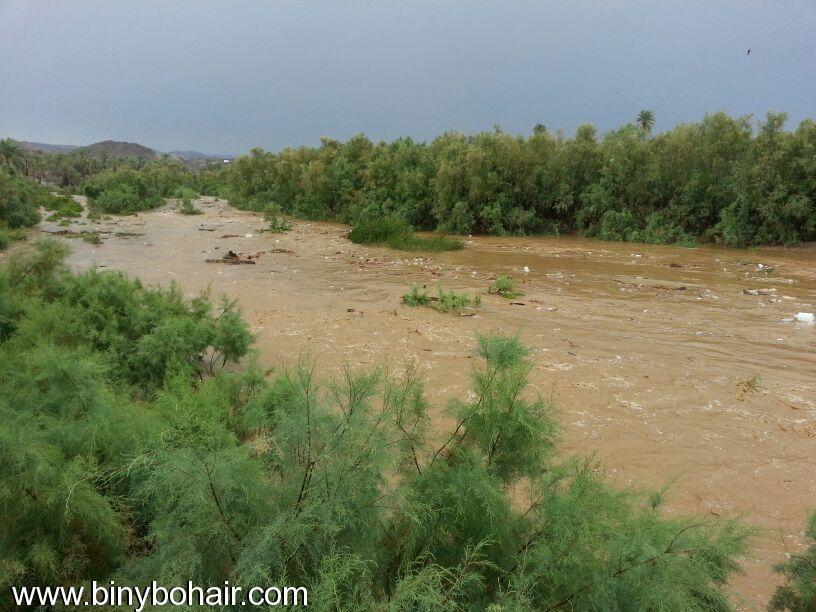 صور--- امطار وسيول{ وادي قنونا djr15990.jpg