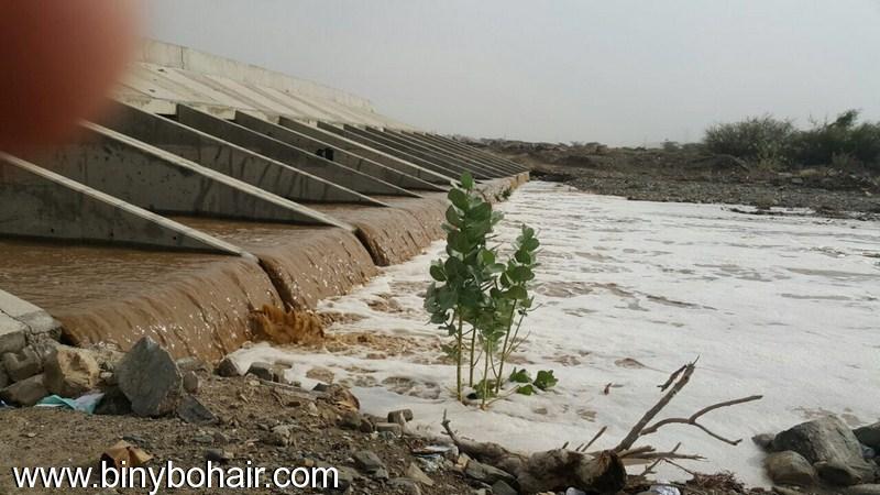 هطول امطار وادي قنونا...الخميس1439/6/13 dwc91804.jpg