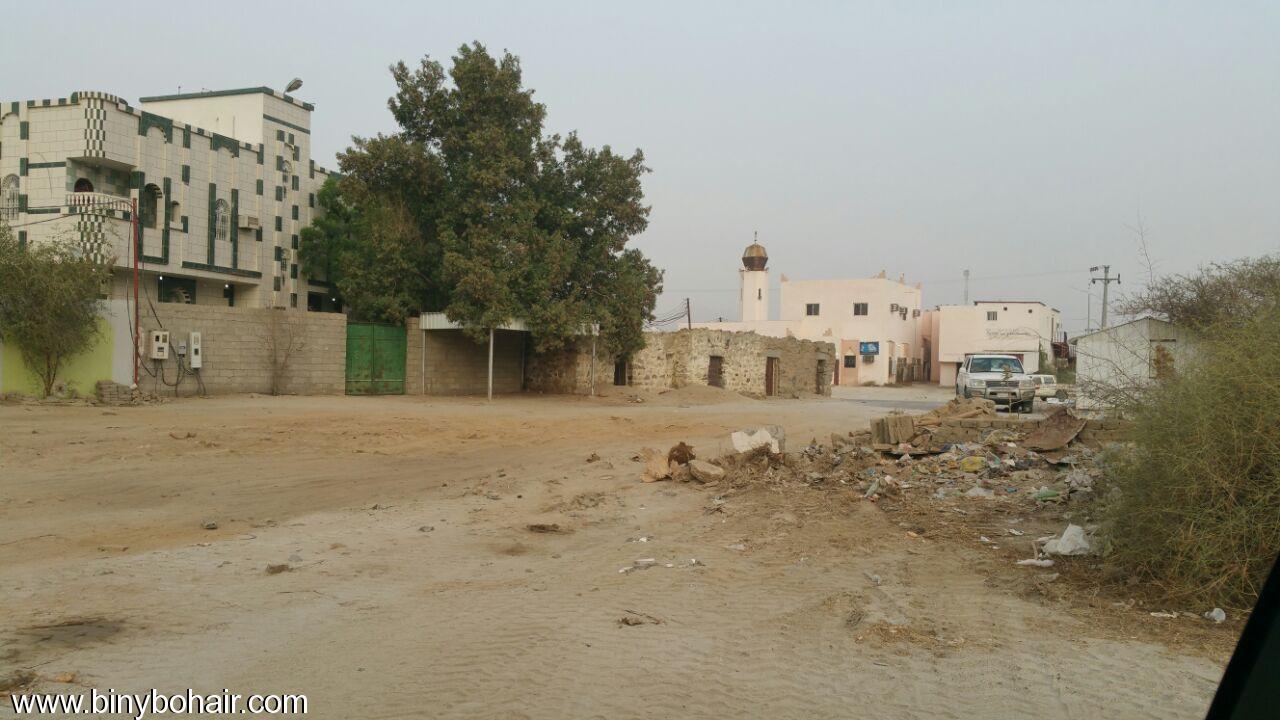 بالصور ..سوق ربوع بحير مابين dwr48750.jpg