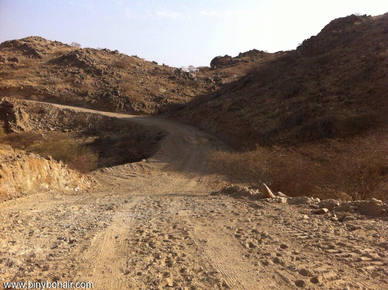 شاهد افتتاح وربط قرية المسلمة edh23061.jpg