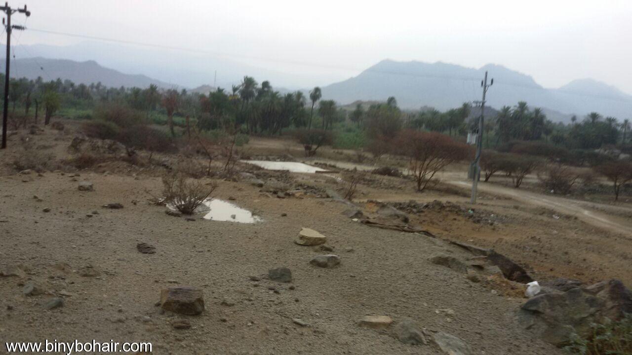 أجواء قرية الحمظة ..مابعد الامطار fym72745.jpg