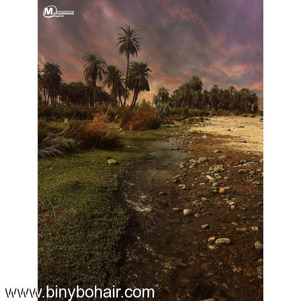 """وادي قنونى..بعدسة المبدع""""محمد دخيل القرني"""" g4p81432.jpg"""