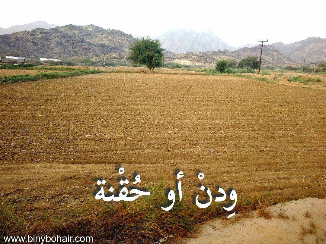 موروثنا..في تسمية الاراضي الزراعية hxz13271.jpg