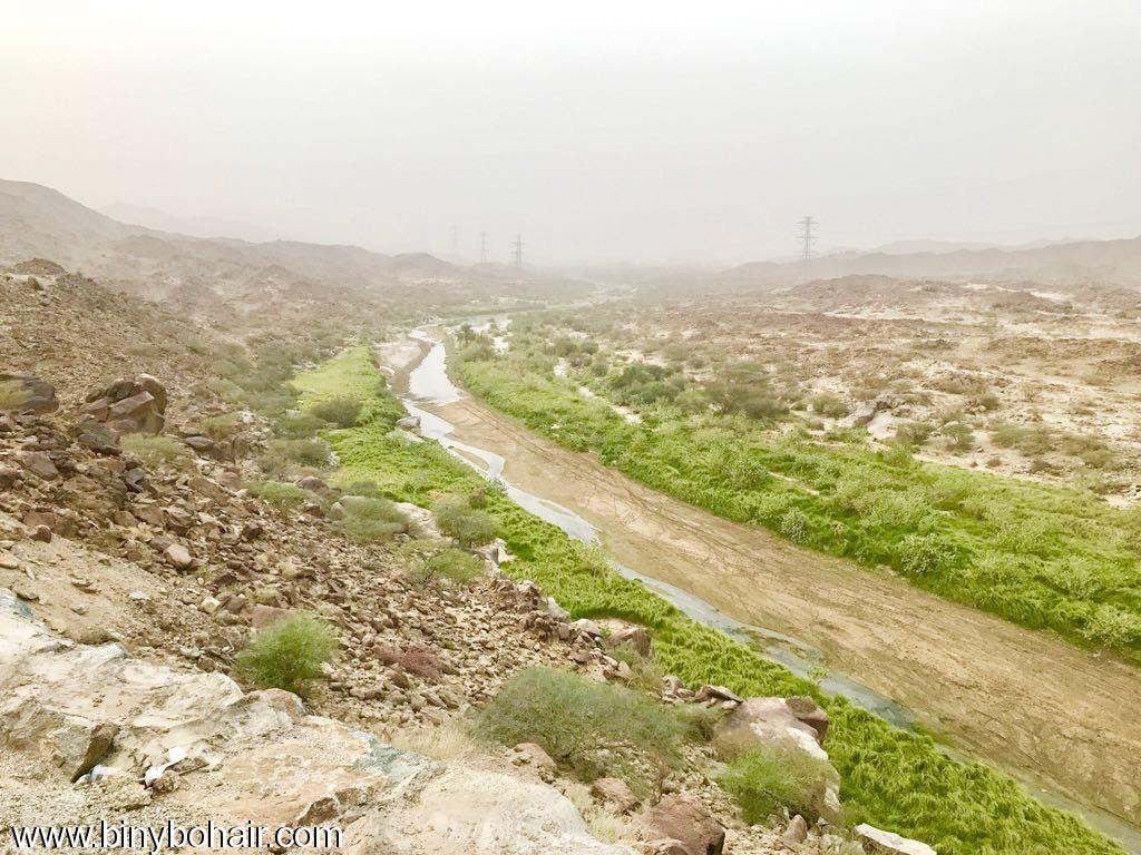 """بالصور ..وادي قنونا"""" نخيل وغدير iok46496.jpg"""