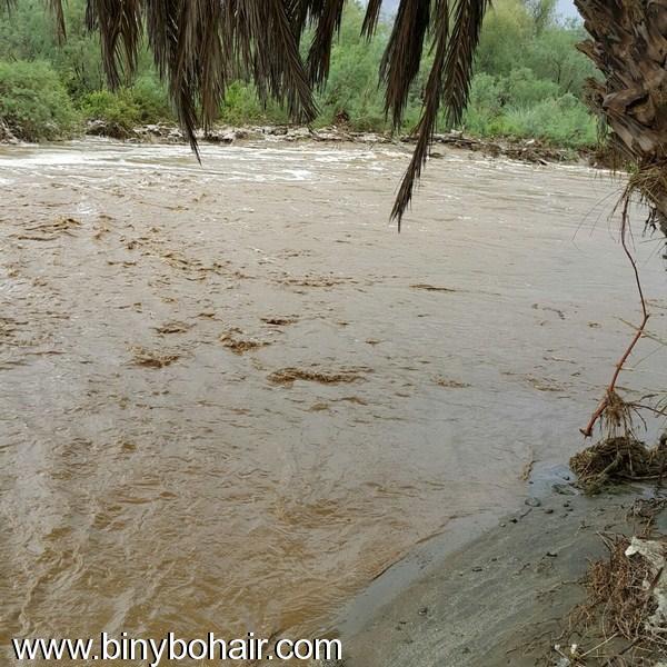 أمطار وسيول وادي قنونى1437/6/23 jdk06971.jpg