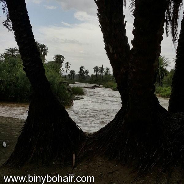 أمطار وسيول وادي قنونى1437/6/23 jm806971.jpg