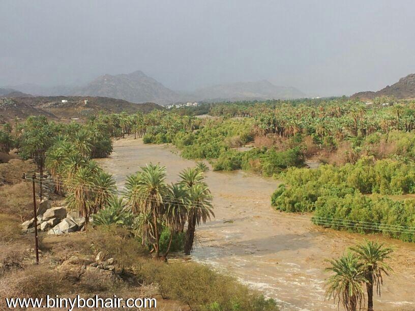 صور--- امطار وسيول{ وادي قنونا khe15991.jpg