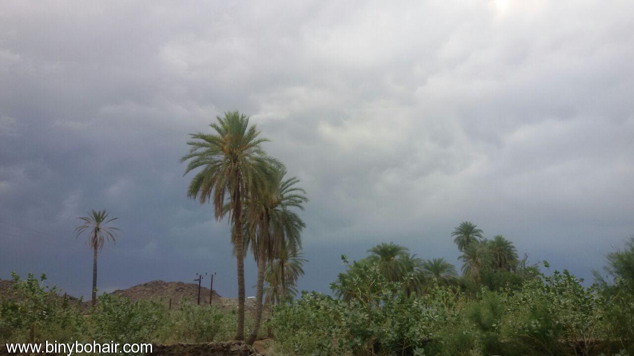 أجواء بحير الربيعية غيمة وأمطار lbm29678.jpg