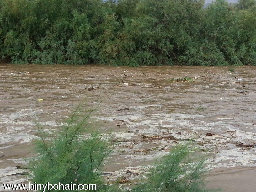 صور--- امطار وسيول{ وادي قنونا nbq15990.jpg