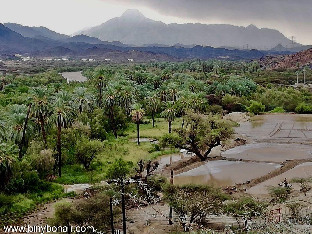 امطار وادي قنونا ..الاثنين1440/2/27 nxm20989.jpeg