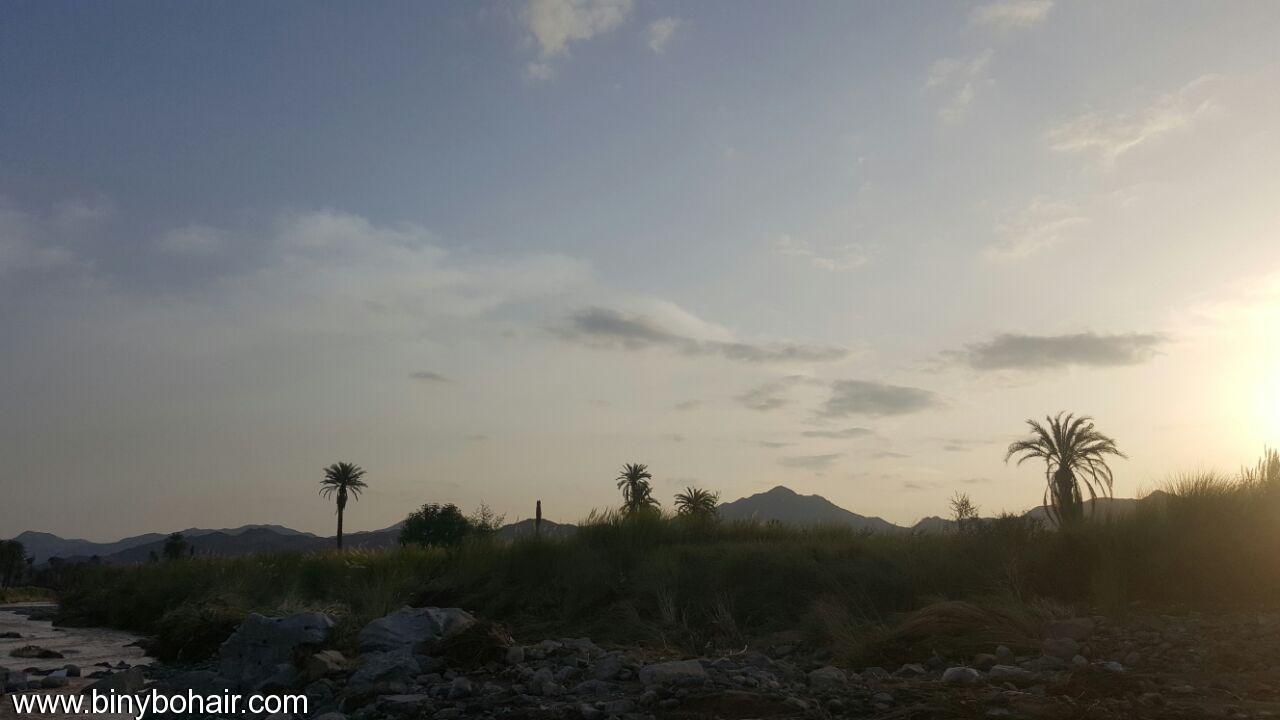 """بالصور ..وادي قنونى""""ياصورة راسمها الوفاء o7b00575.jpg"""