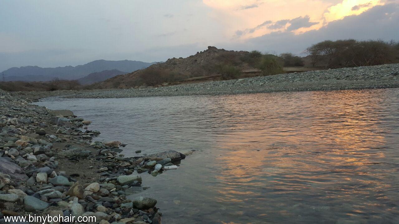 """بالصور ..وادي قنونى""""ياصورة راسمها الوفاء p9f00575.jpg"""