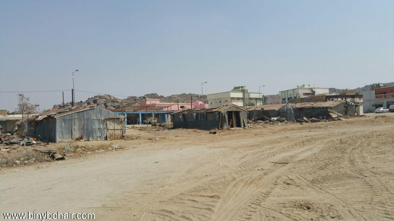 بالصور ..سوق ربوع بحير مابين rjo48564.jpg