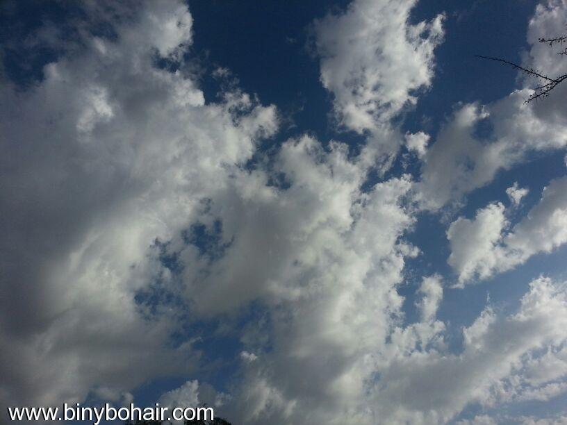 صور--- امطار وسيول{ وادي قنونا tds16561.jpg