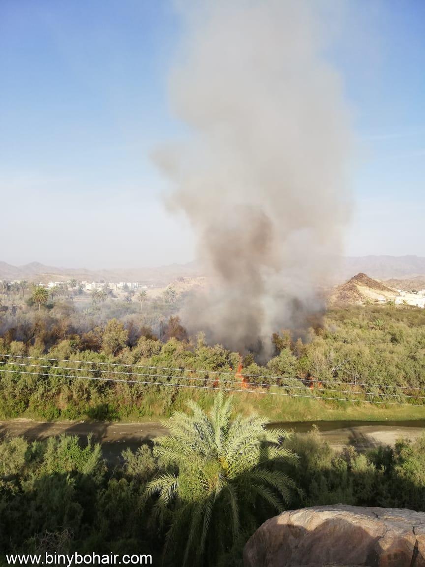 اندلاع حريق وادي قنونا ابلاغ un768858.jpeg