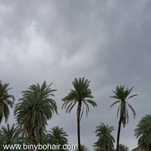 أمطار وسيول وادي قنونى1437/6/23 vbx06971.jpg