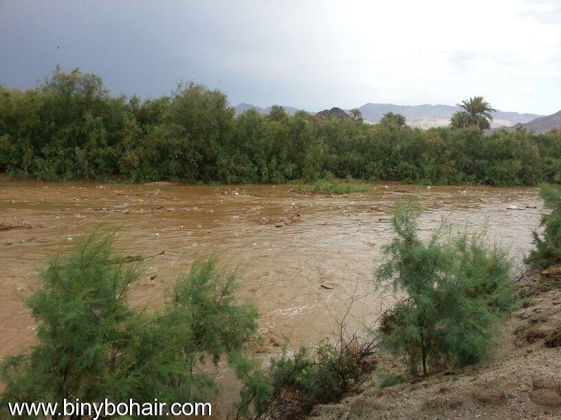 صور--- امطار وسيول{ وادي قنونا vhd15990.jpg