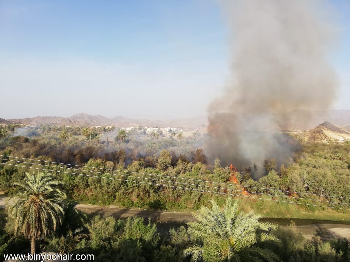 اندلاع حريق وادي قنونا ابلاغ vnv68858.jpeg