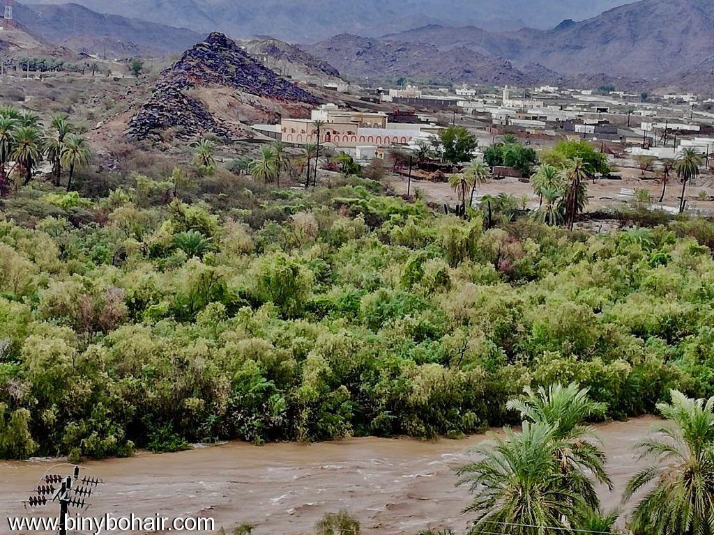 امطار وادي قنونا ..الاثنين1440/2/27 xr820990.jpeg