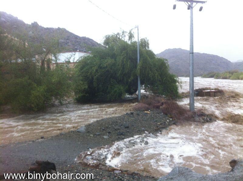 فيديو للأمطار والسيول قريتي صقارن yqw75269.jpg