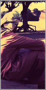 الصورة الرمزية ابو جرح . البحيري